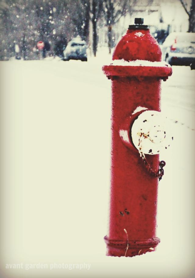 blog020213_hydrantv3