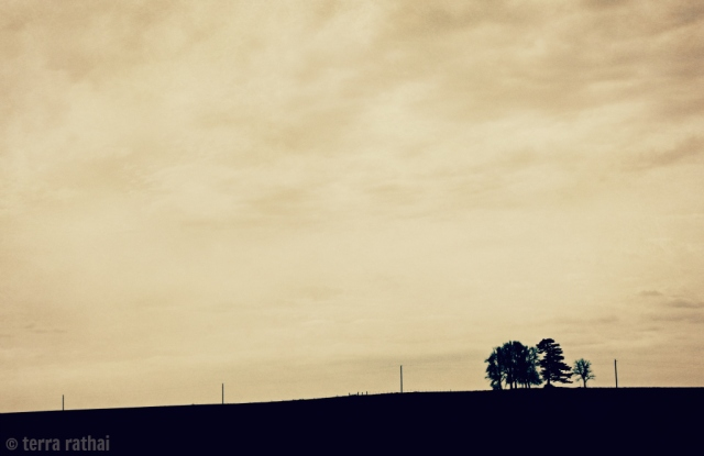 blog040613_iowa highway view