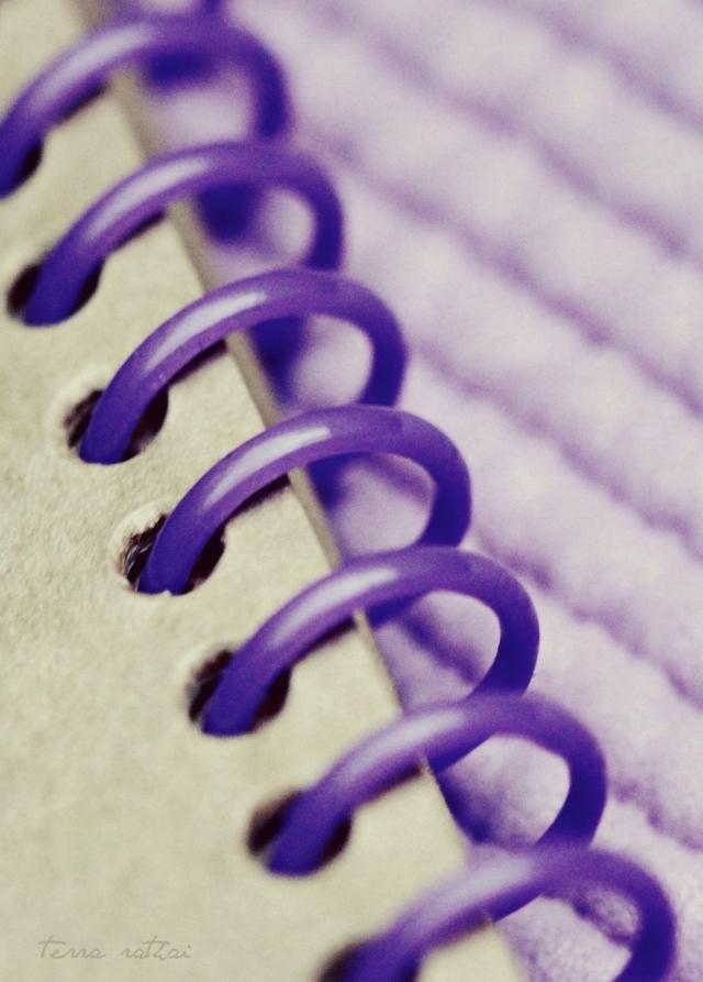 blog011315_violet spiral