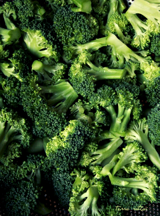 blog022515_broccoli