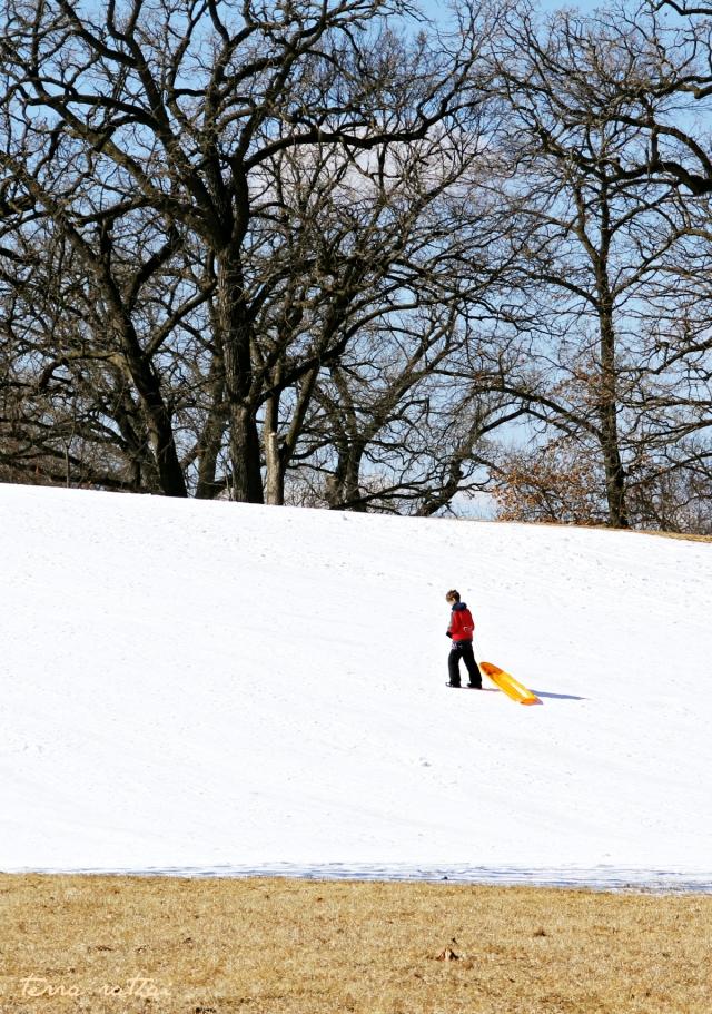 blog030815_last sledding day