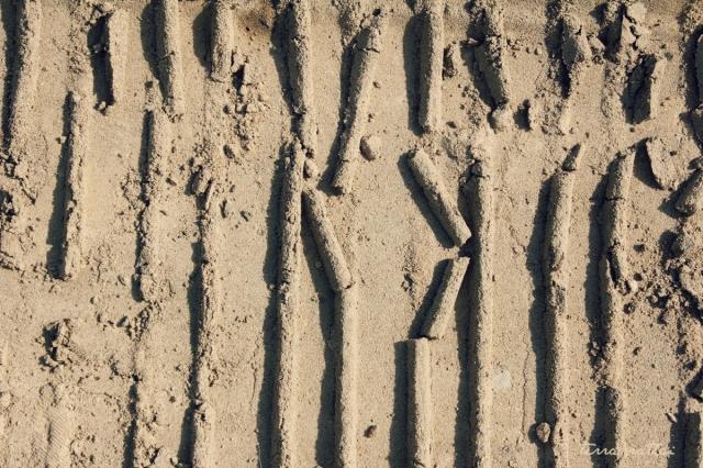 blog052515_sand tracks