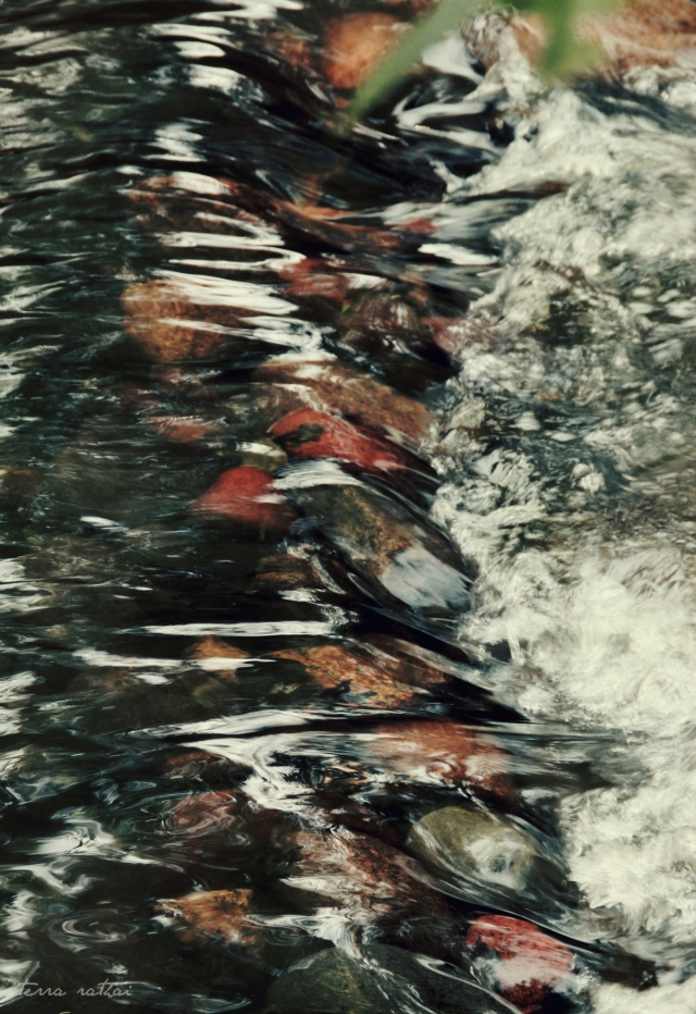 blog052815_rocks&water