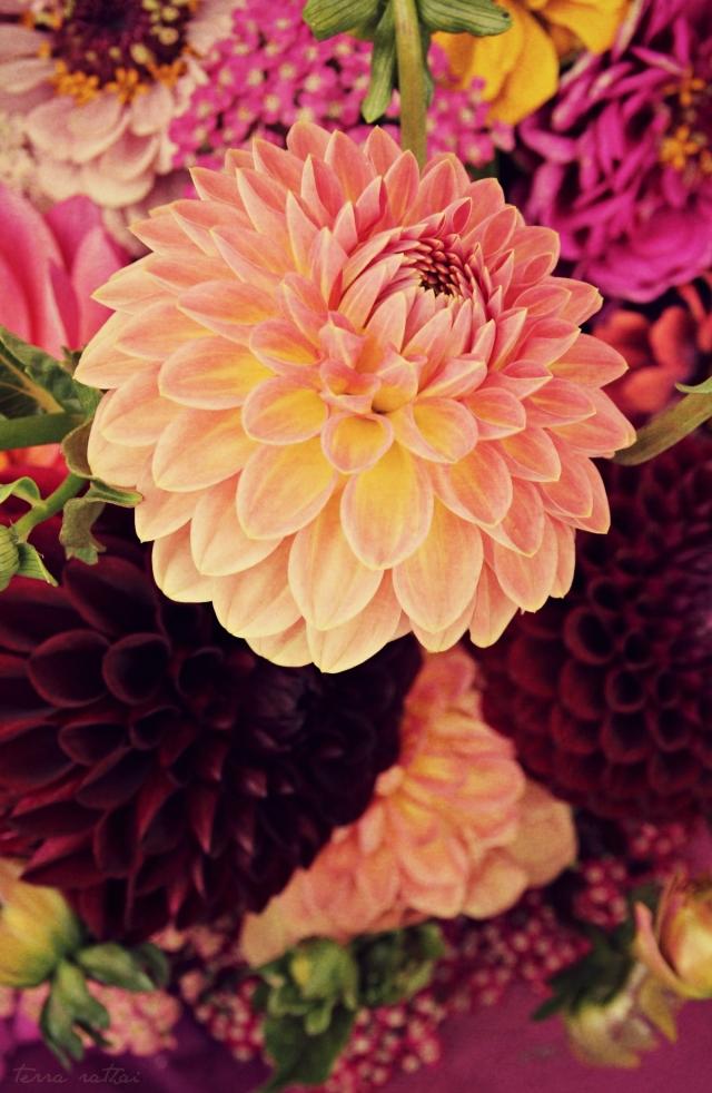 blog071615_farmers-market-bouquet