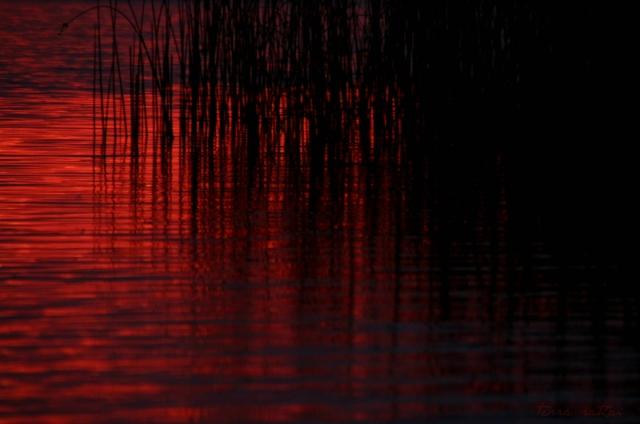 blog080315_sunset