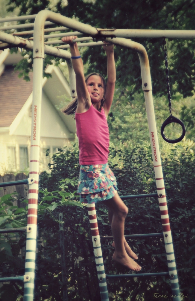 blog081615_zola-monkey-bars