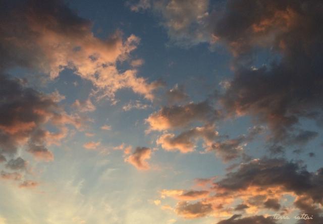 blog082215_sunrise-yoga