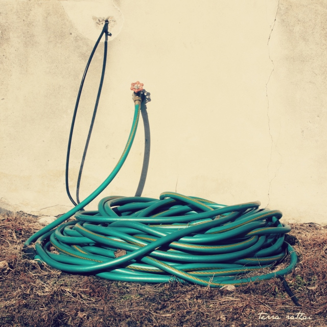 online020217_garden-hose