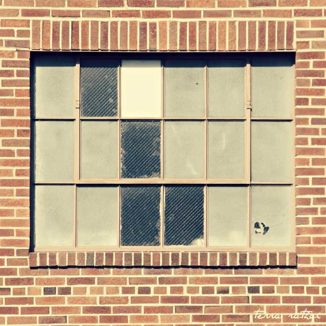 online030517_grounds-bldg-window