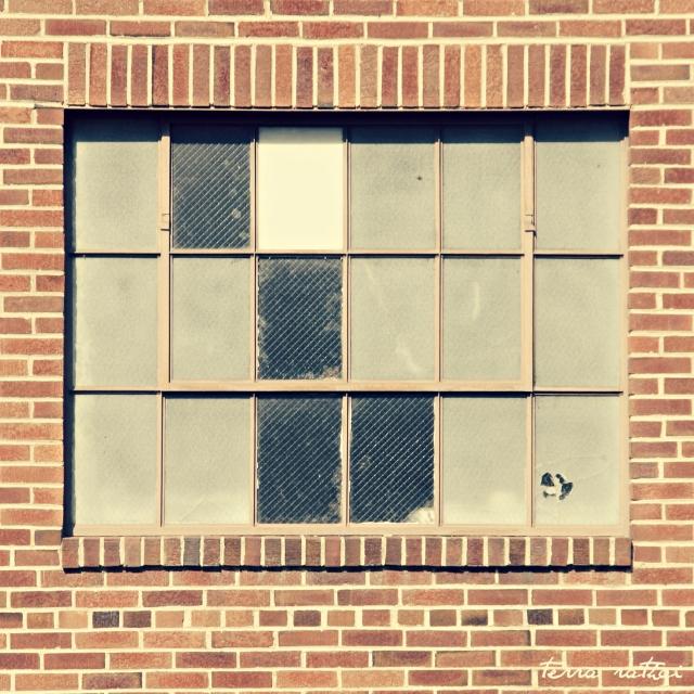 online030517_grounds-bldg-window