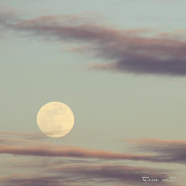 online031117_moonrise