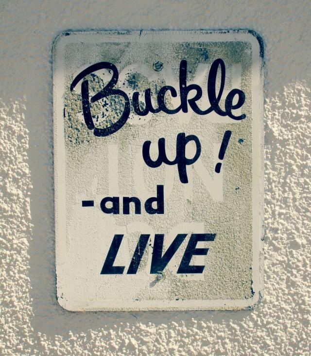 online_buckle up